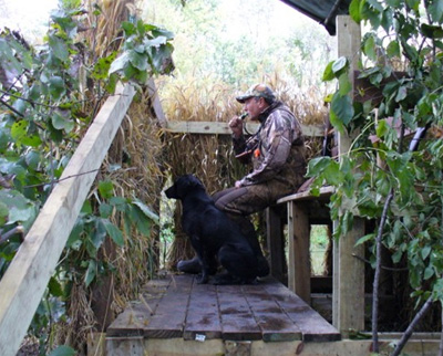 Proper Duck Blind Setups Big Game Logic